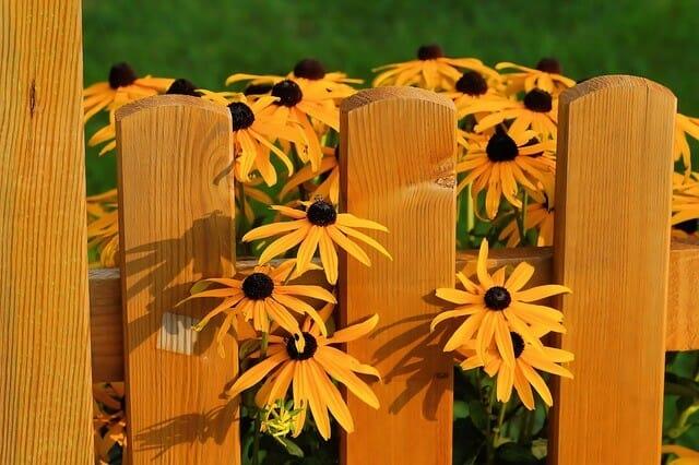 Gartenzaun Blumen