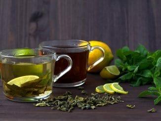 Abnehmen mit grünen Tee So klappt's