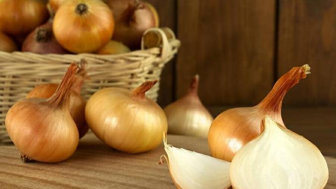 Zwiebel gegen Haarausfall