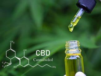 CBD-Öl gegen Migräne